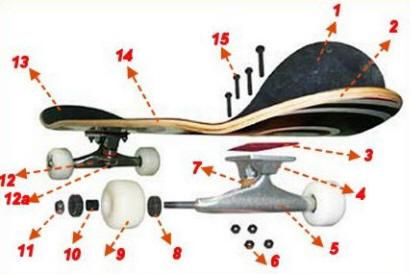 滑板的构造